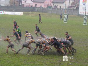 Timisoara - Harlequins doar la stadion