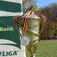 Cine si de ce participa la Campionatul National de rugby 7?