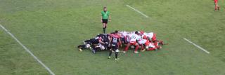 Toulon invinsa in prima etapa din Top 14